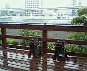 隅田川沿いのギャラリー