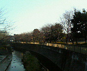 仙川祖師谷公園